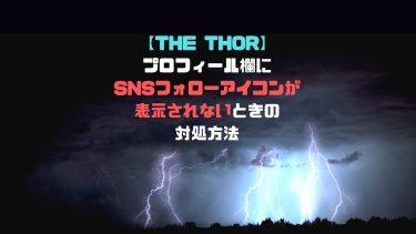 【THE THOR】プロフィール欄にSNSフォローアイコンが表示されないときの対処方法