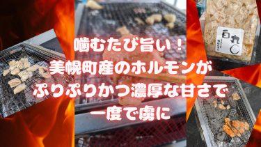 【赤丸白丸】自宅焼肉をレベルアップ!ホルモン好きなら迷わずこの品を選んで欲しい逸品